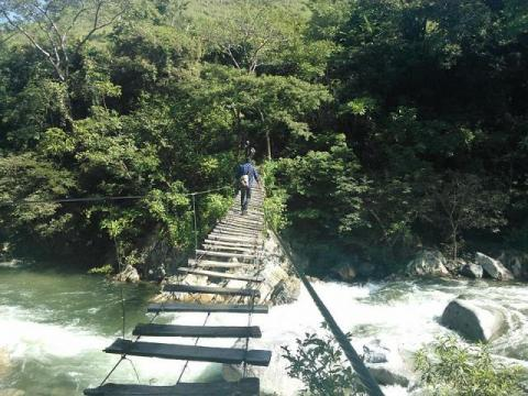 Footbridge over the Coapa River in Chiapas, Mexico, which supports local silvopasture (forestry and livestock grazing). Lameirasb/Wikipedia, CC BY-SA
